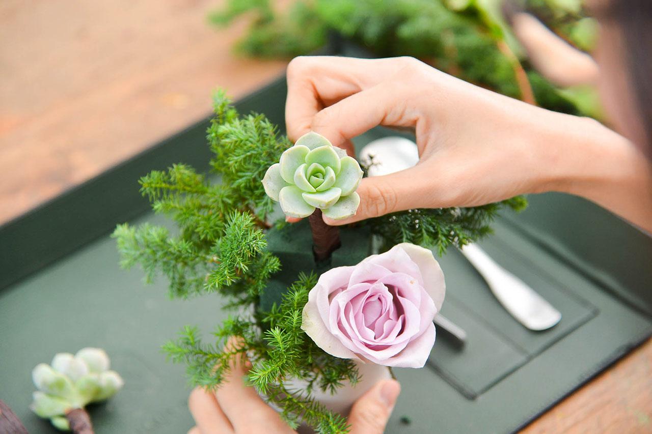 花形多肉與玫瑰花
