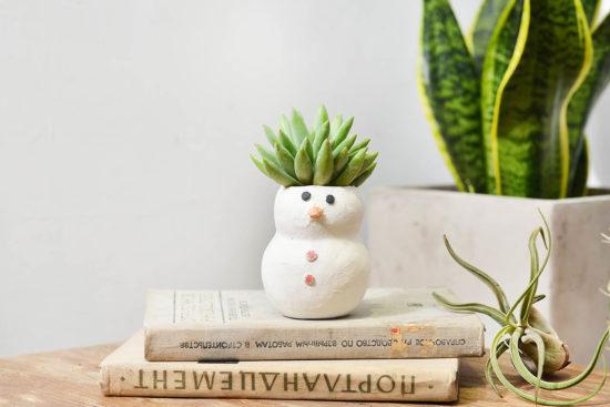 有肉:今年聖誕節一起交換植物! 8