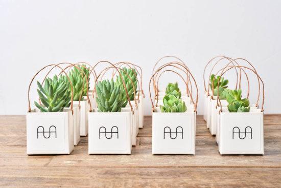 4 種盆栽禮品包裝與包裝細節 0906 AHA品牌經紀客製化禮品 041
