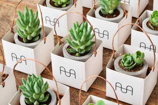 4 種盆栽禮品包裝與包裝細節 0906 AHA品牌經紀客製化禮品 045