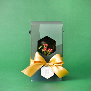 彩綠 - 吉祥長壽禮盒 400 彩綠