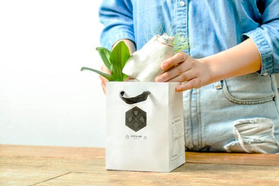 4 種盆栽禮品包裝與包裝細節 0621 有肉禮品提袋包裝拍攝 070