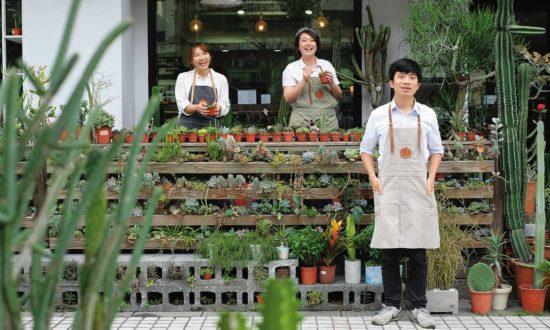 新聞媒體報導 Succulent Gift」DIY屬於你的療癒多肉