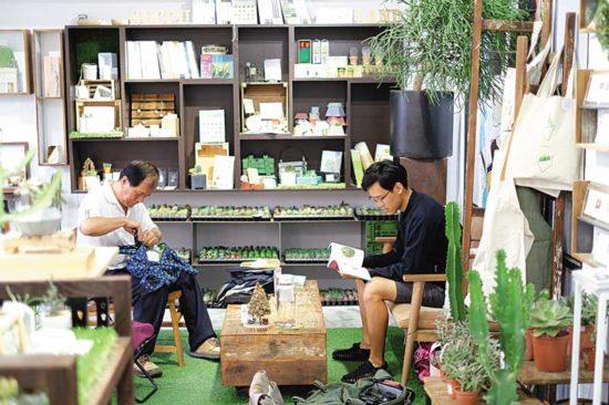 新聞媒體報導 Succulent Gift」DIY屬於你的療癒多肉2
