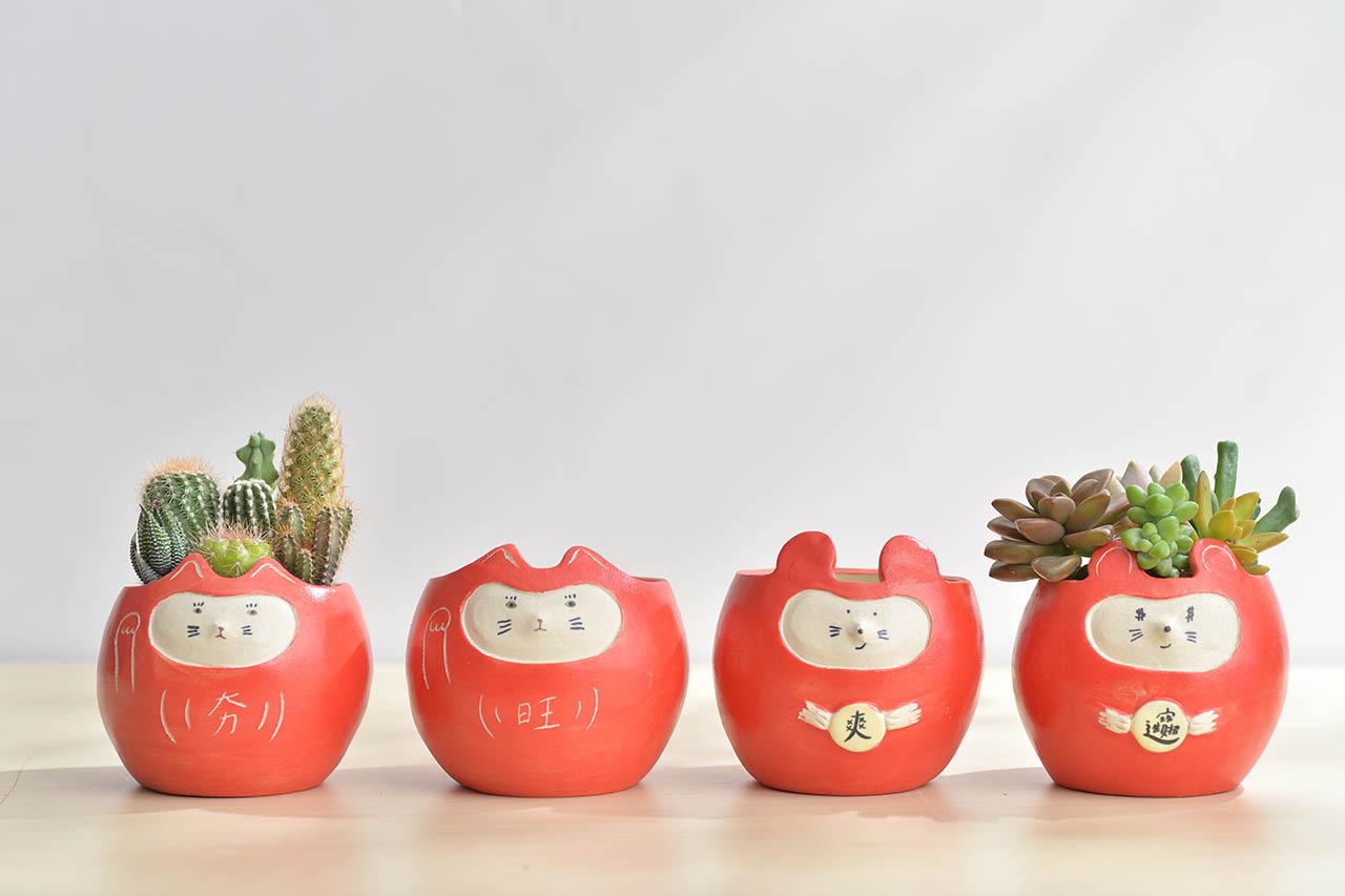 四種紅色盆栽