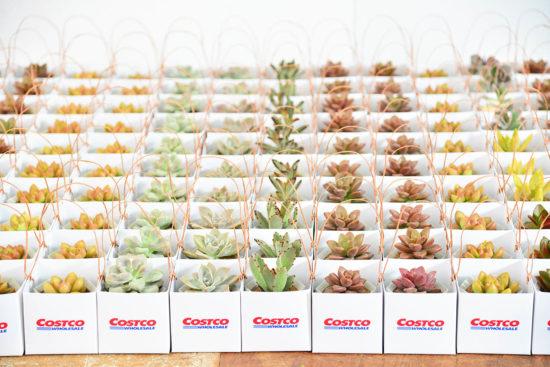 送媽媽有創意的禮物吧!過一個療癒母親節 0220 COSTCO企業送禮 012