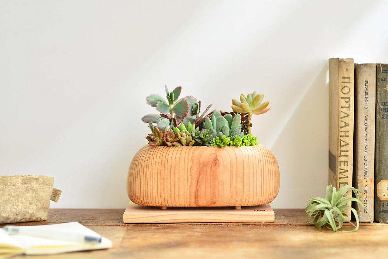 實木盆器放在木桌上