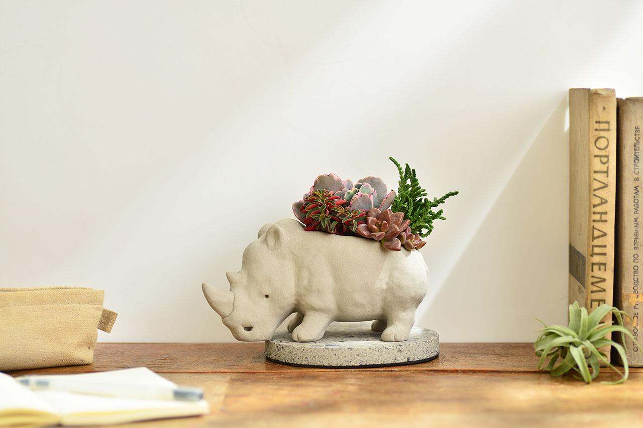 熱帶非洲 - 燦爛犀牛 生日禮物6