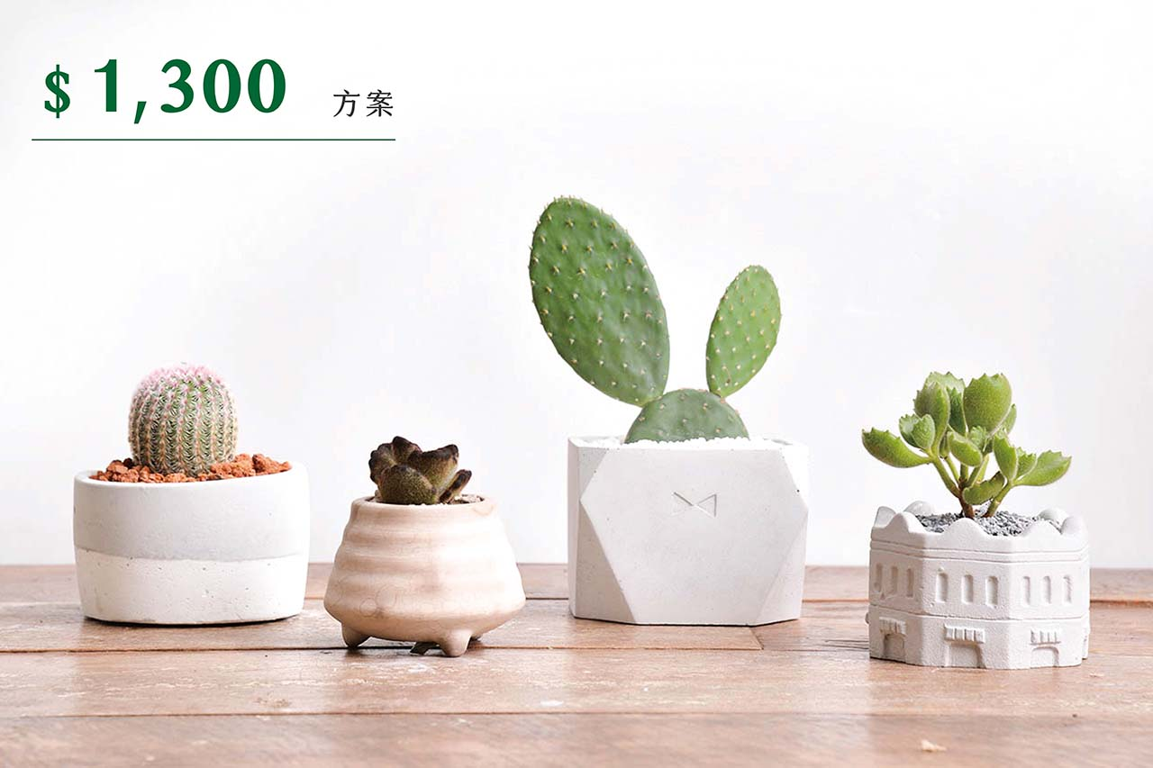 [ 多肉花藝 ] 綠生活多肉植栽 1300 01