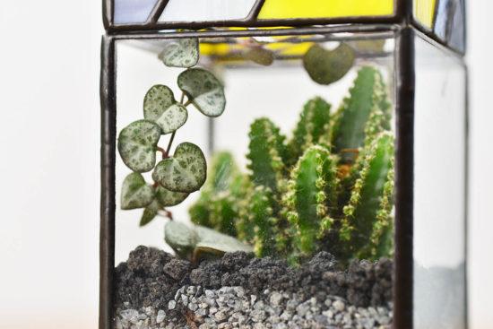 台灣盆器 / 植栽新設計(2020 第一季) 植栽新設計(2020 第一季)璃光之間作品3