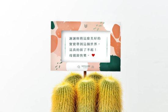 母親節卡片給新手媽媽