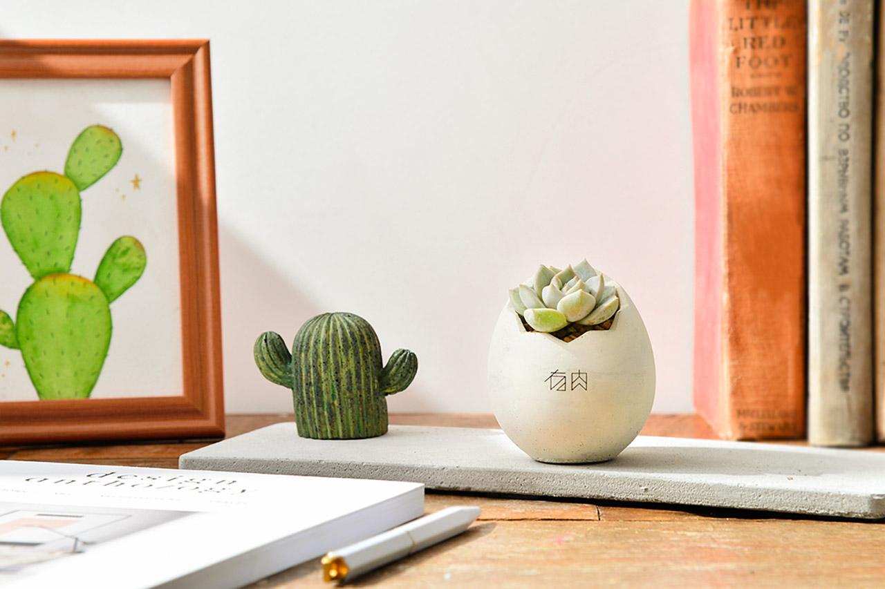 企業活動 - 園藝系列手作課程 2020端午節植物系禮盒14