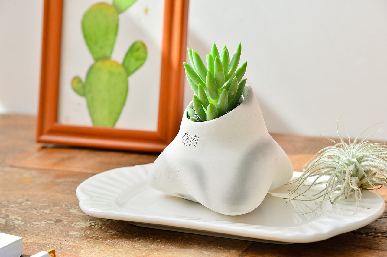 企業活動 - 園藝系列手作課程 2020端午節植物系禮盒20