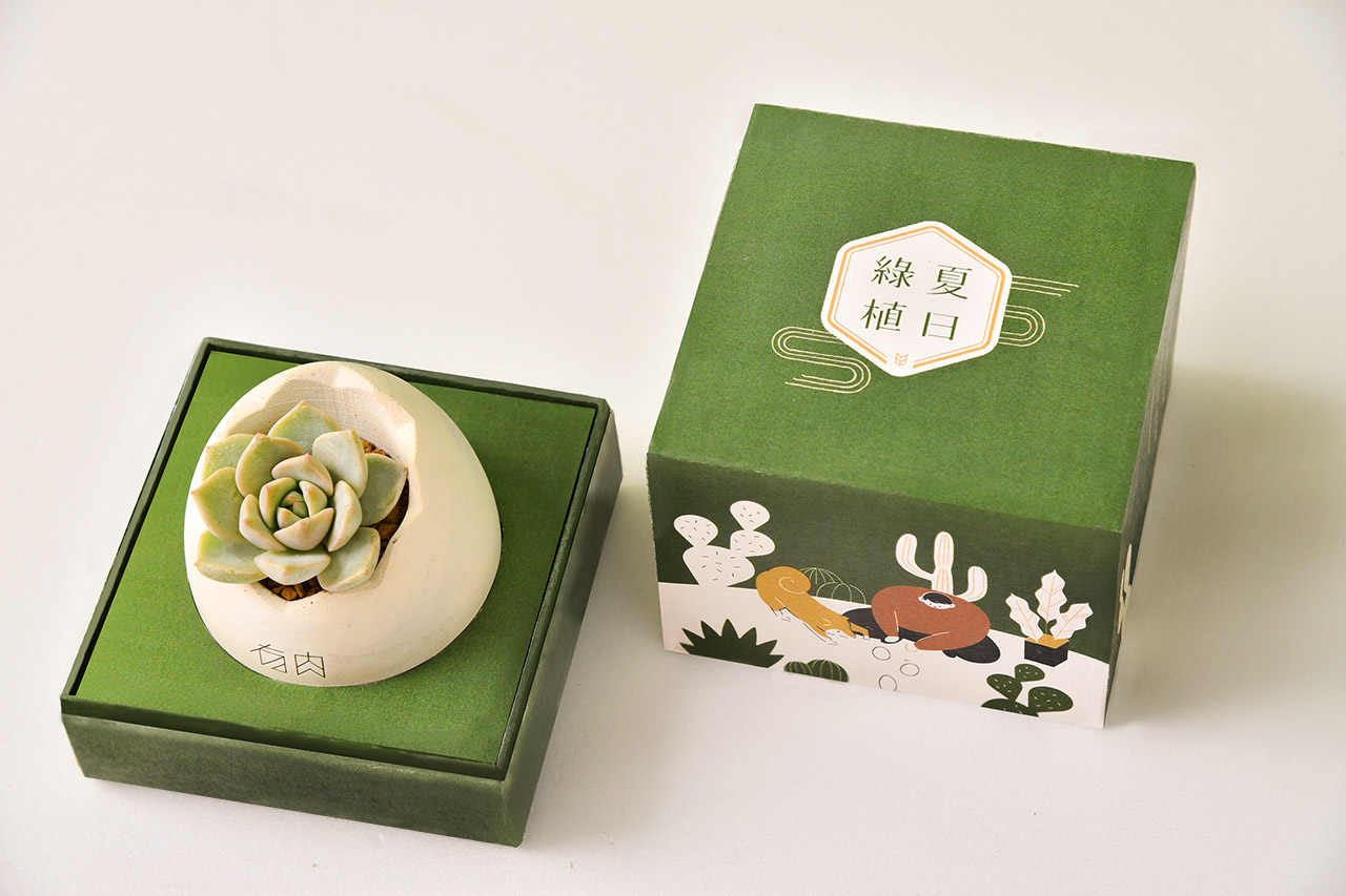 客製化多肉盆栽禮贈品 2020端午節禮盒 設計作品17