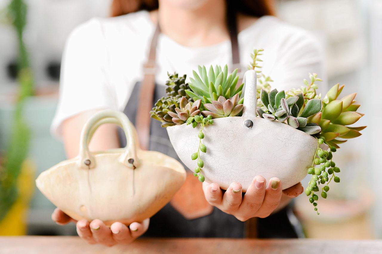 花籃裝滿多肉植物