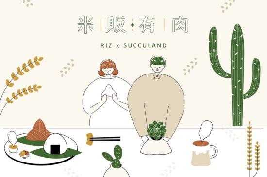 多肉粽 & 米香粽,2020 端午節不同的粽子選擇 2