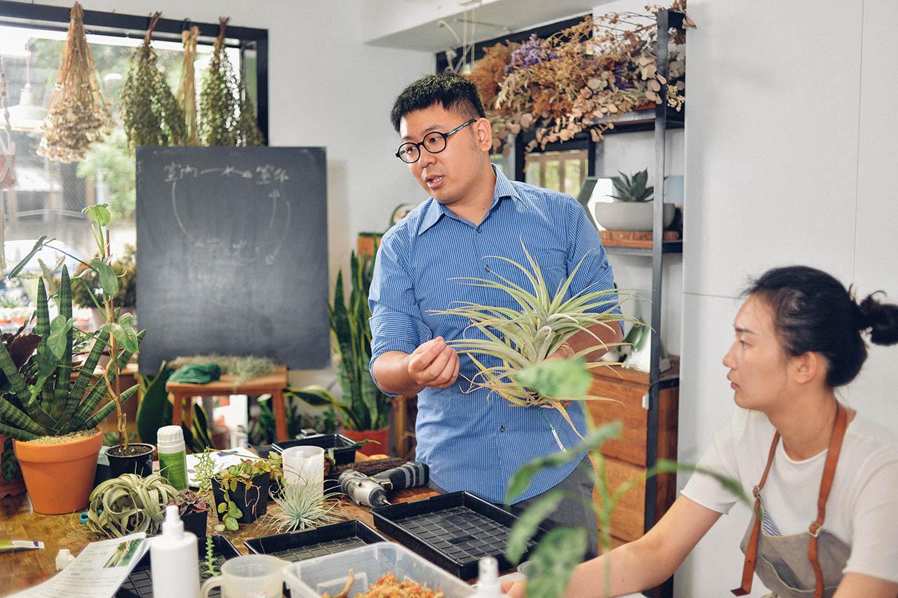 低光照植物課程