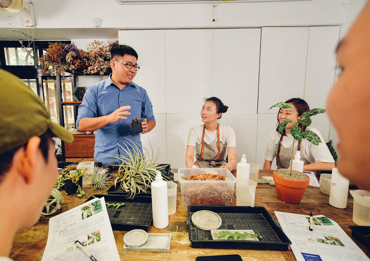 室內盆栽種植教學