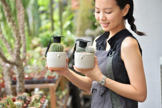 蘭花也算是多肉植物?教你如何照顧 仙人掌盆栽12