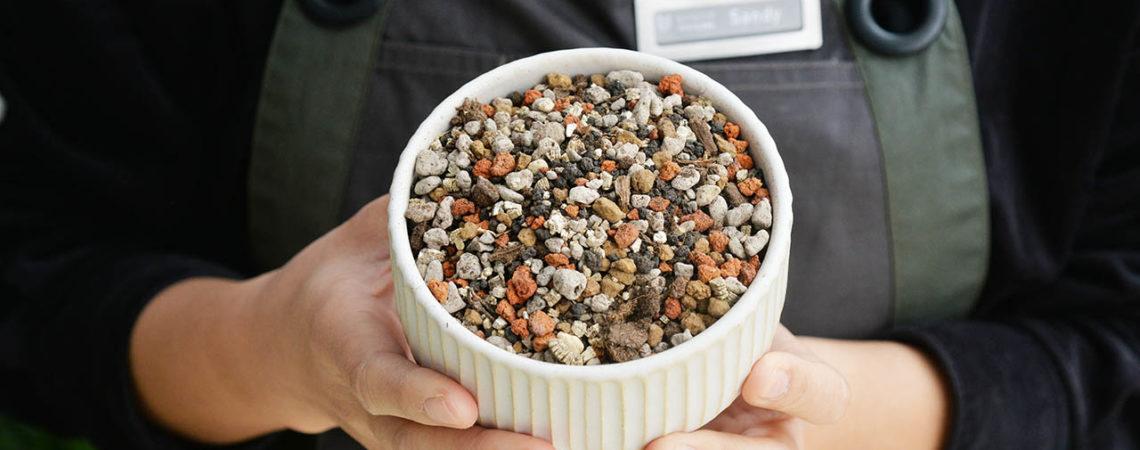 多肉植物專用土 介質酸鹼值測試 0207 土壤酸鹼值測驗@台北 018