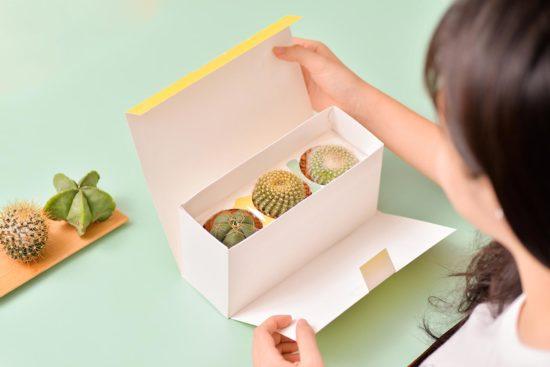 植物禮盒贈禮