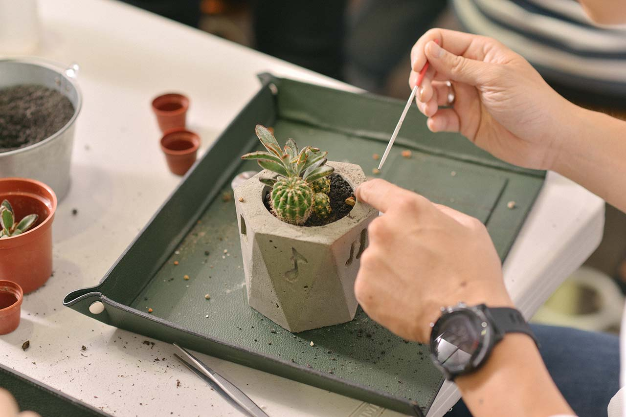 水泥盆栽製作上課實況 多肉種植 學員上課實景