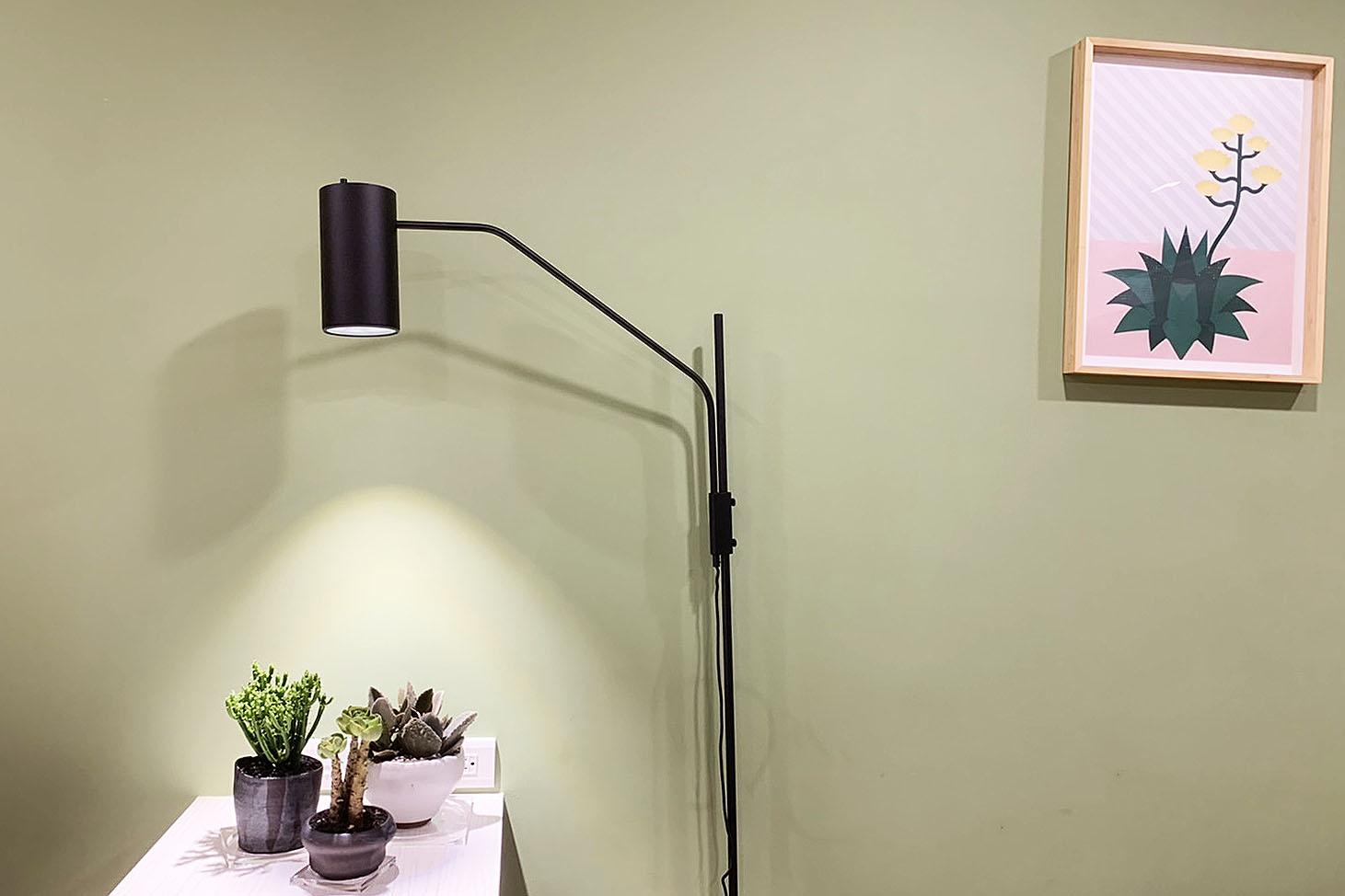 植物燈常見問題