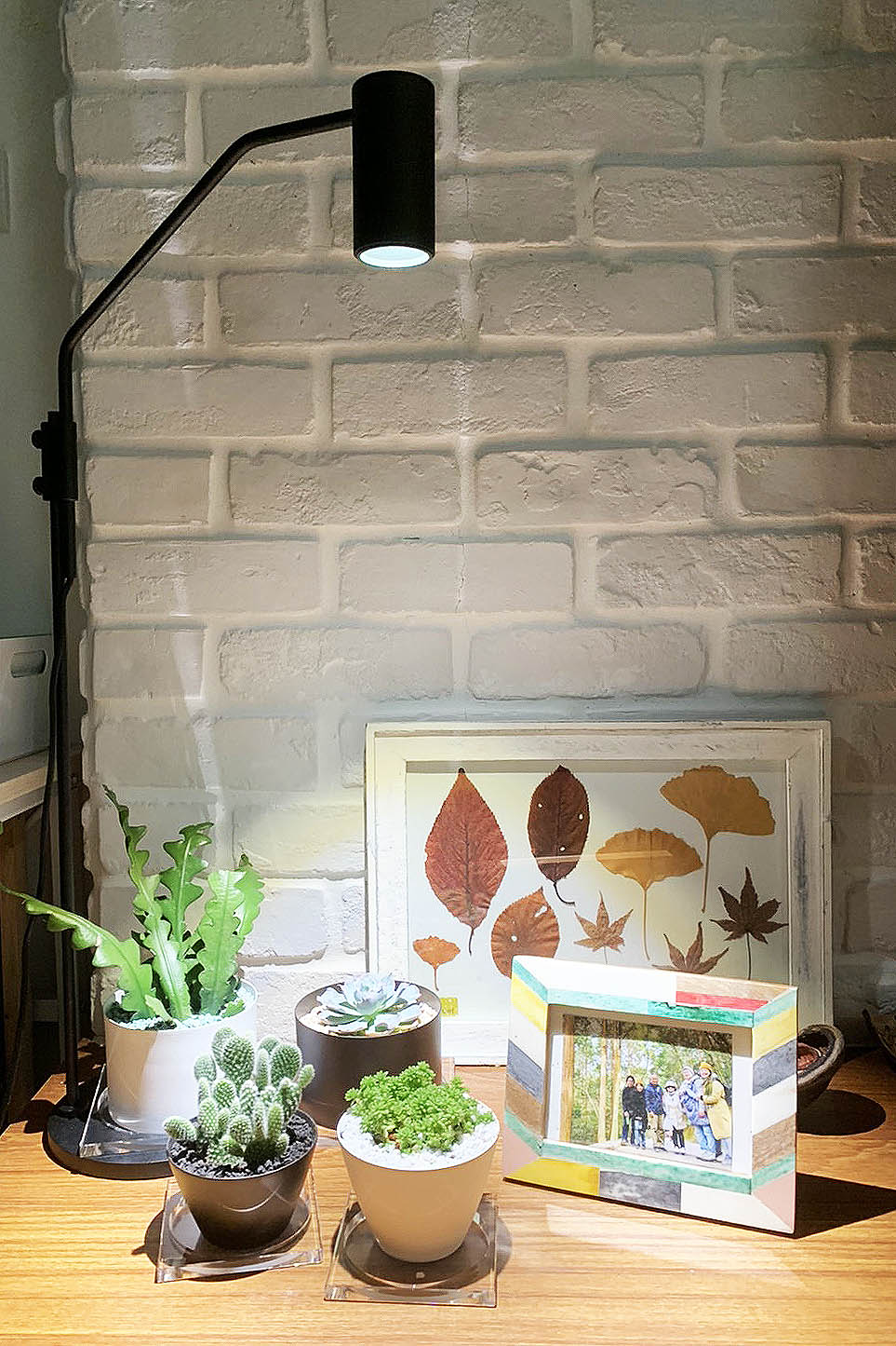 OURA 室內植物燈 - 桌燈 OURA17