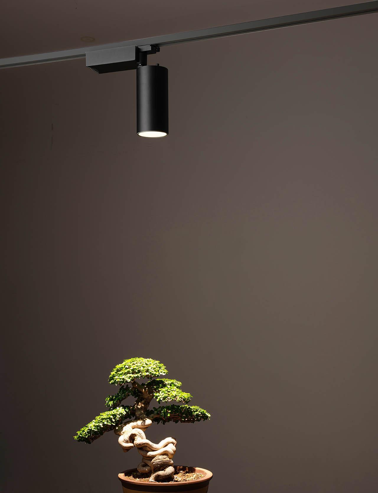最美的軌道植物燈