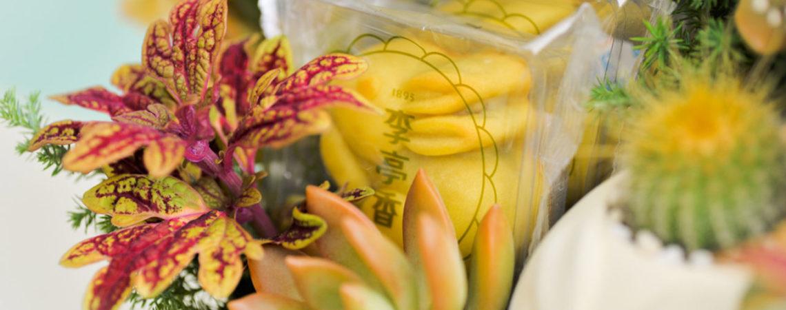 最「綠」的中秋節月餅禮盒推薦! 寶柚兔多肉花禮5