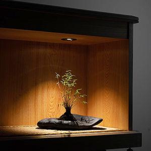 嵌燈植物燈