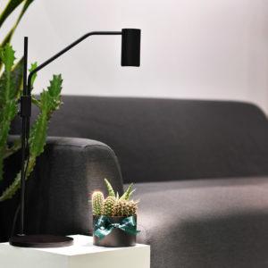 植物燈專區