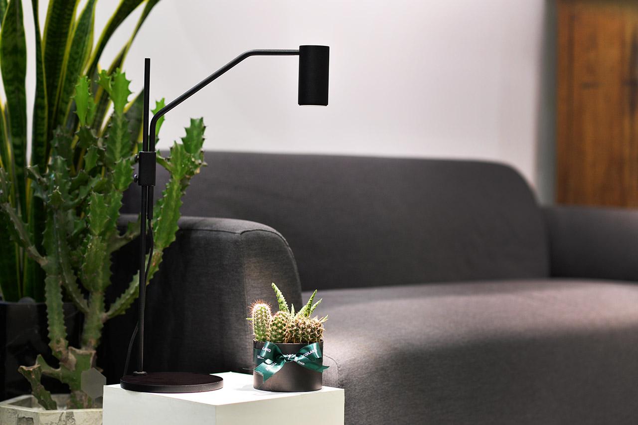簡約造型植物燈