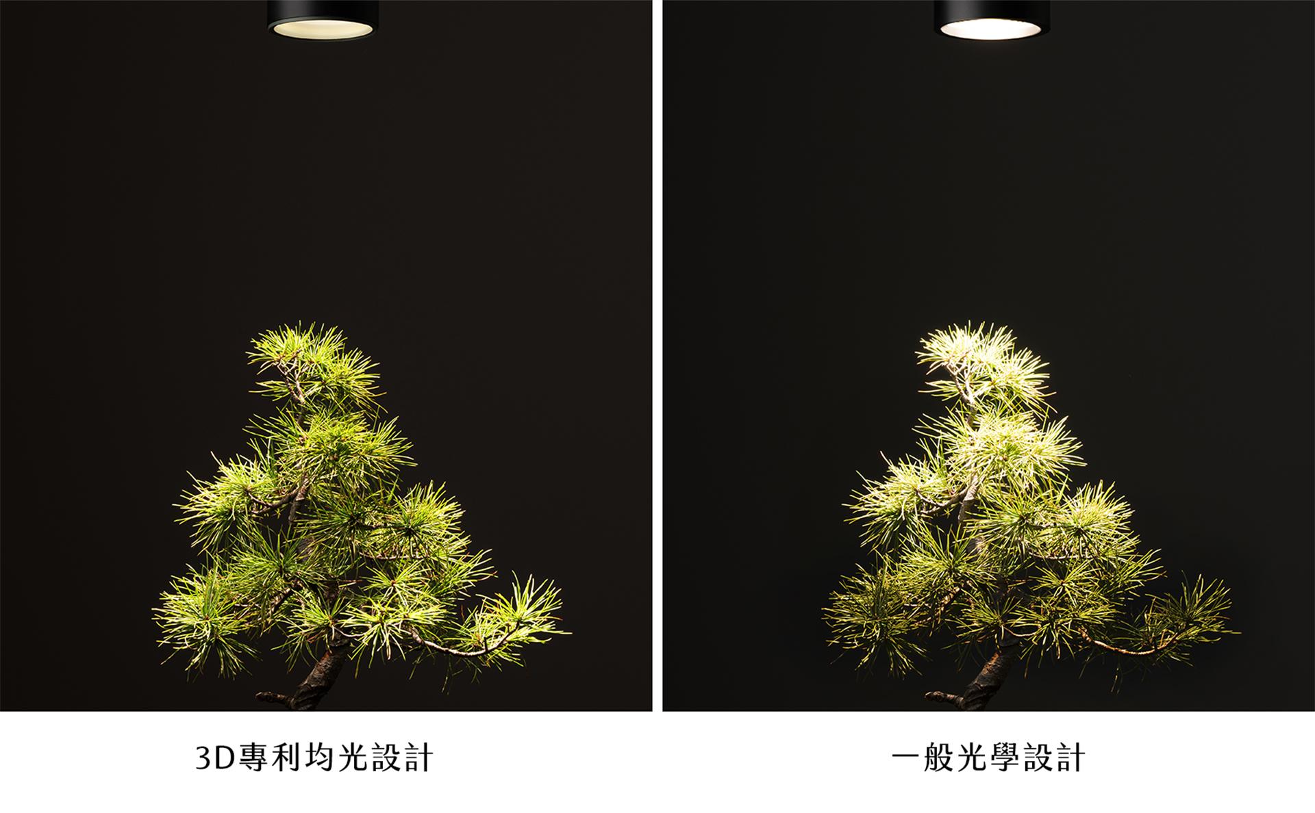 植物燈泡測試樣張