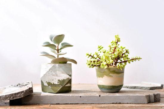 11 種水泥盆栽設計的美好(2021 更新) 2 5