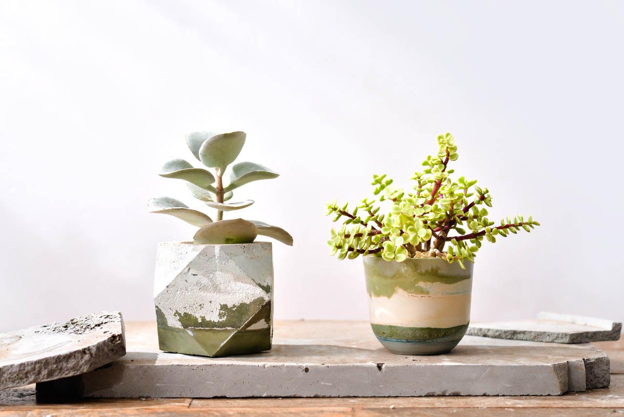 [ 水泥課程 ] 諧意繪泥 & 療癒植栽 2 5