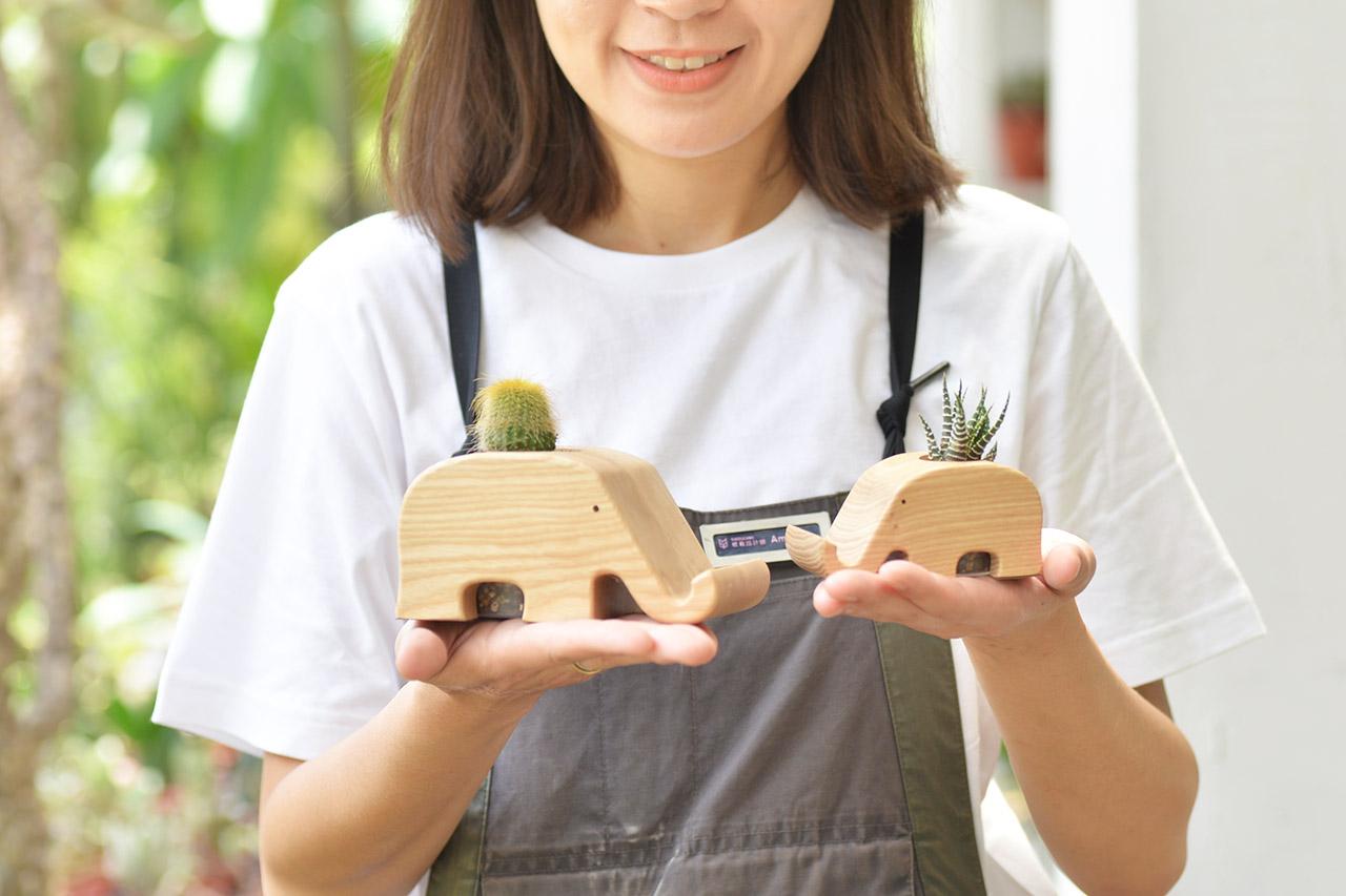 桌上型大象造型盆栽