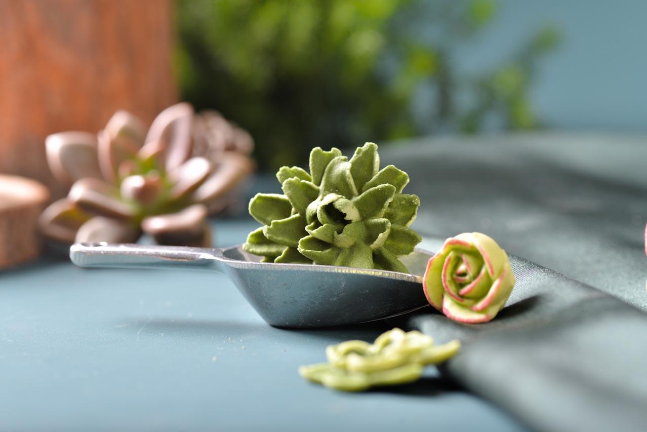 多肉植物甜點造型