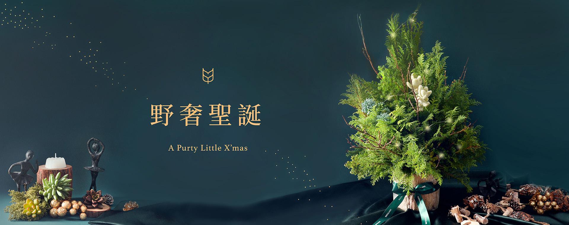 [ 聖誕活動 ] 野奢聖誕(多肉聖誕樹) 官網 1