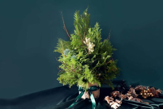 野奢聖誕樹