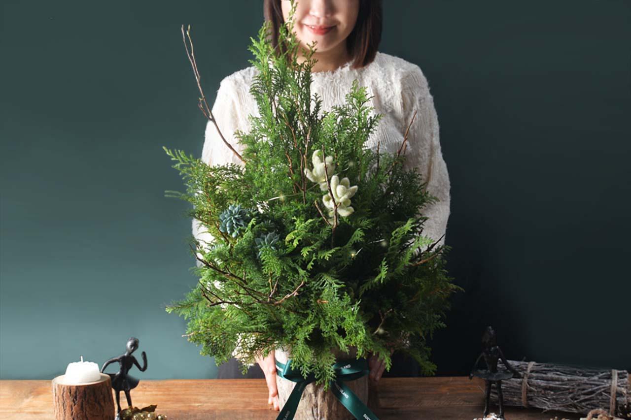 [ 聖誕活動 ] 野奢聖誕(多肉聖誕樹) 4 3 1