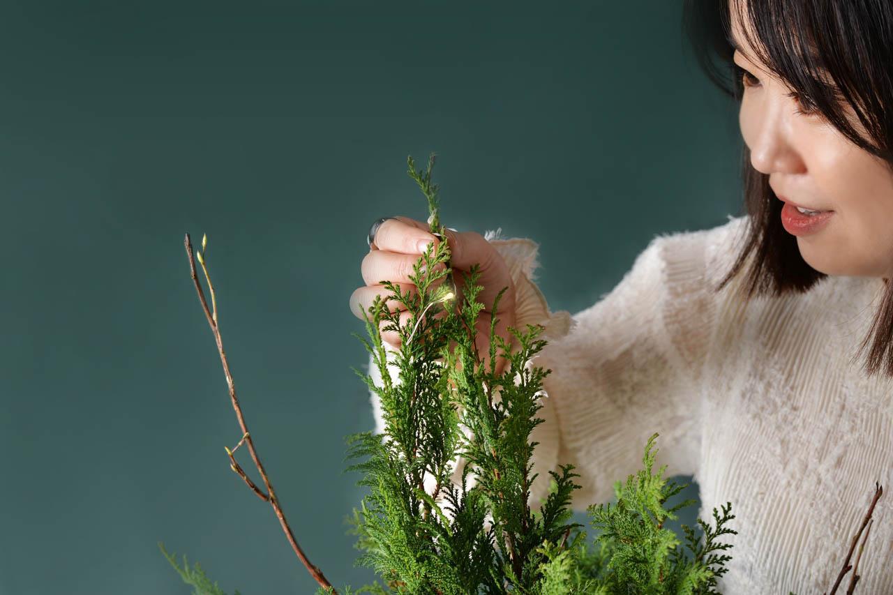 [ 聖誕活動 ] 野奢聖誕(多肉聖誕樹) 7 1 1