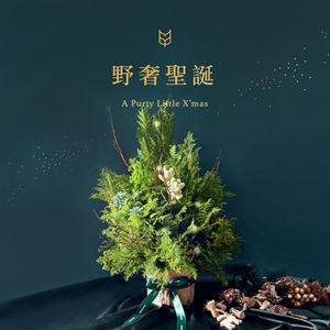 [ 聖誕活動 ] 野奢聖誕(多肉聖誕樹) 400X400