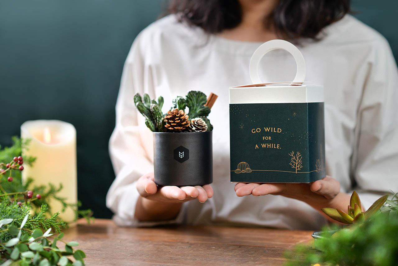 2020 年聖誕植物禮盒 2020聖誕禮物1 1
