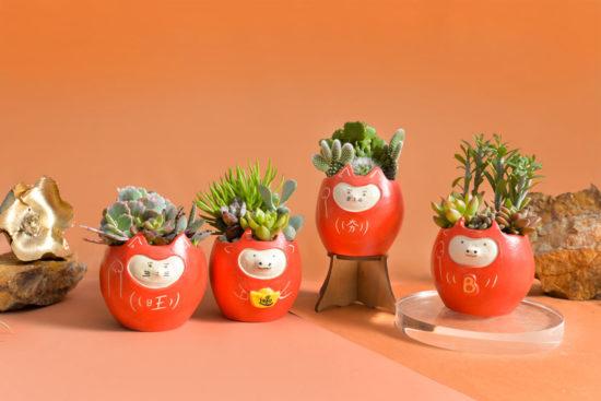 新春盆栽禮品