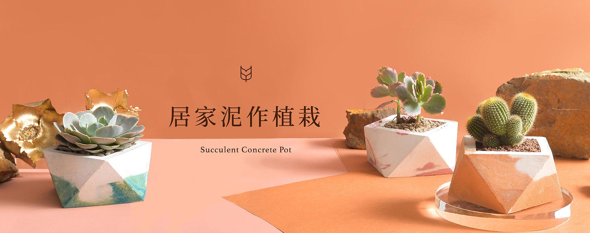 0514 新版水泥盆栽DIY創作課程 [已復原]