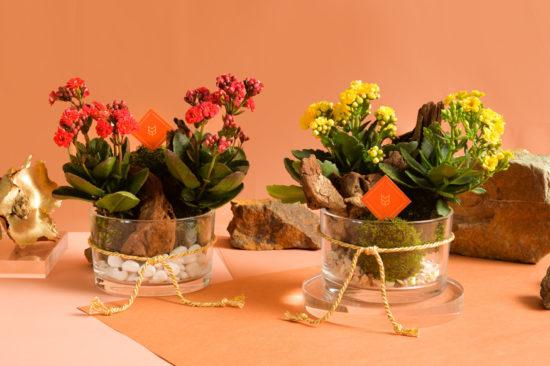 農曆新年(春節)的由來、習俗與禮品推薦(2021更新 ) 1