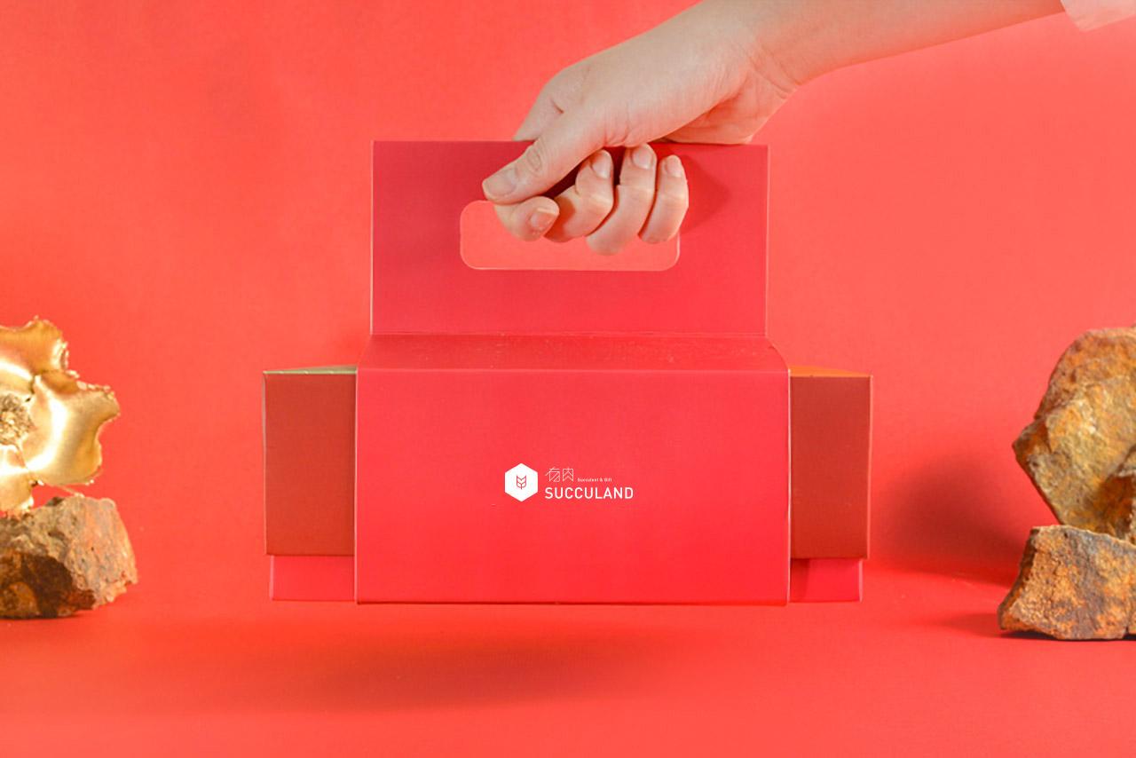 聯名春節禮盒