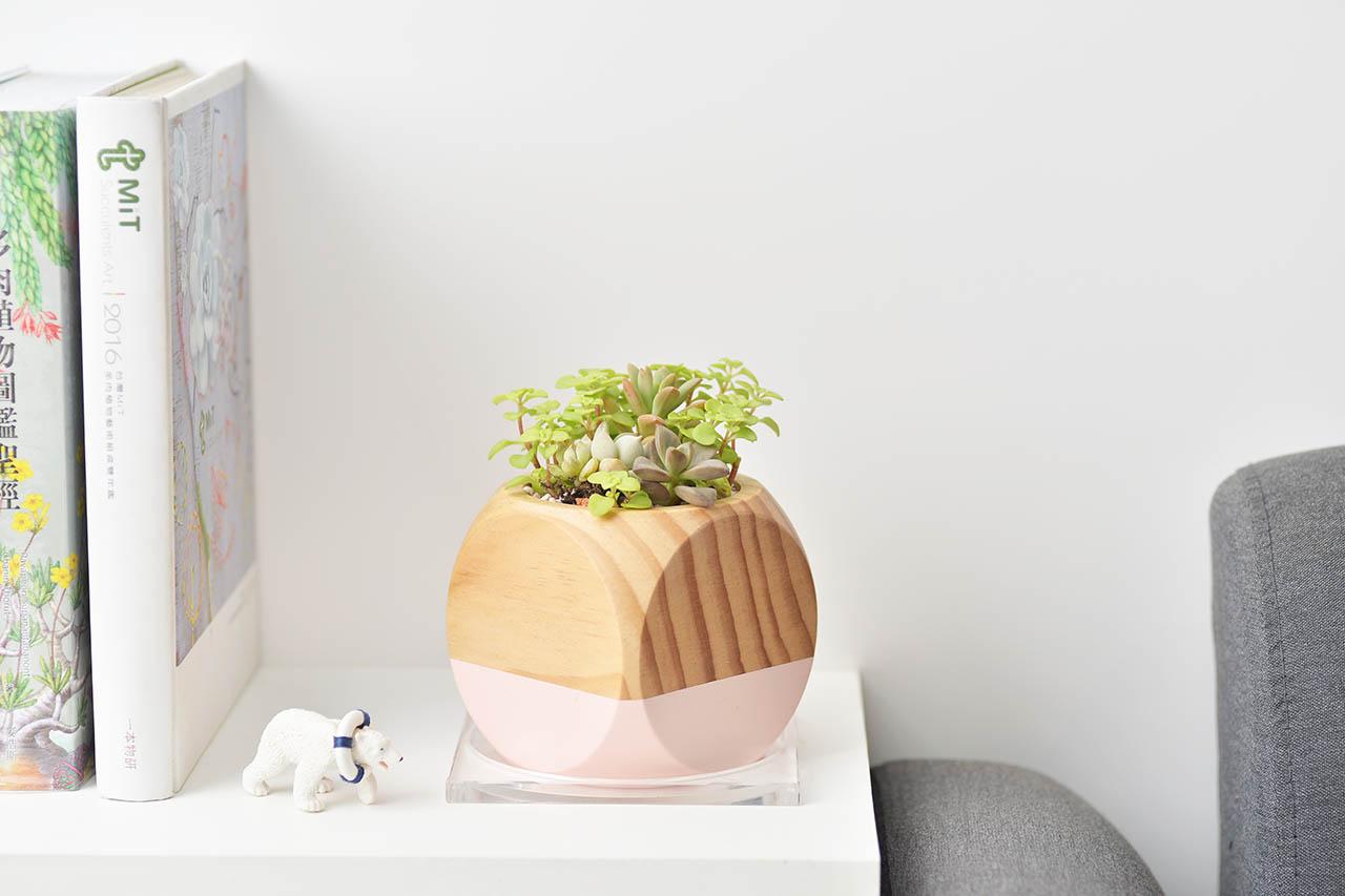 桌上型木頭盆器