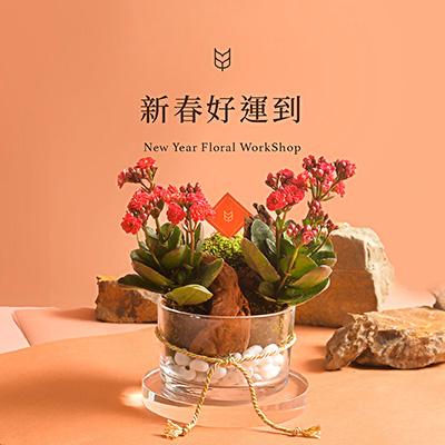 [ 春節花藝 ] 新春好運到(過年盆栽) 400X400